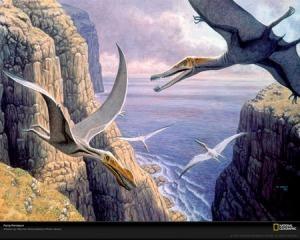 Pteranodon flygande dinosaurier som dog ut för ca 64 miljoner år sedan till följd av det stora meteoritnedsalget på Yucatan-halvön i Mexico.