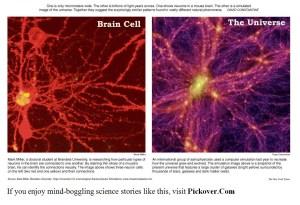I universum finns en märklig likhet mellan uppbyggnaden av de allra största strukturerna och de minsta. Här visas en bild på neuroner i hjärnan och galaxer i universum.